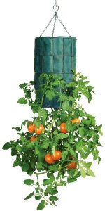 revolution-upside-down-tomato-planter-1